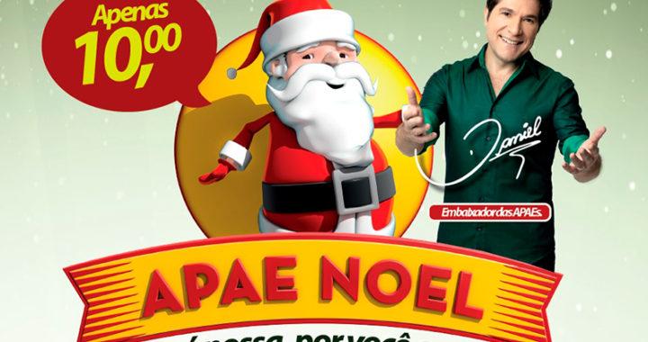 apae_noel